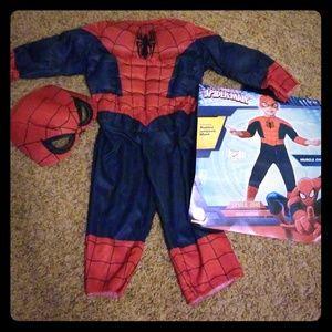 2T Spiderman halloween costume